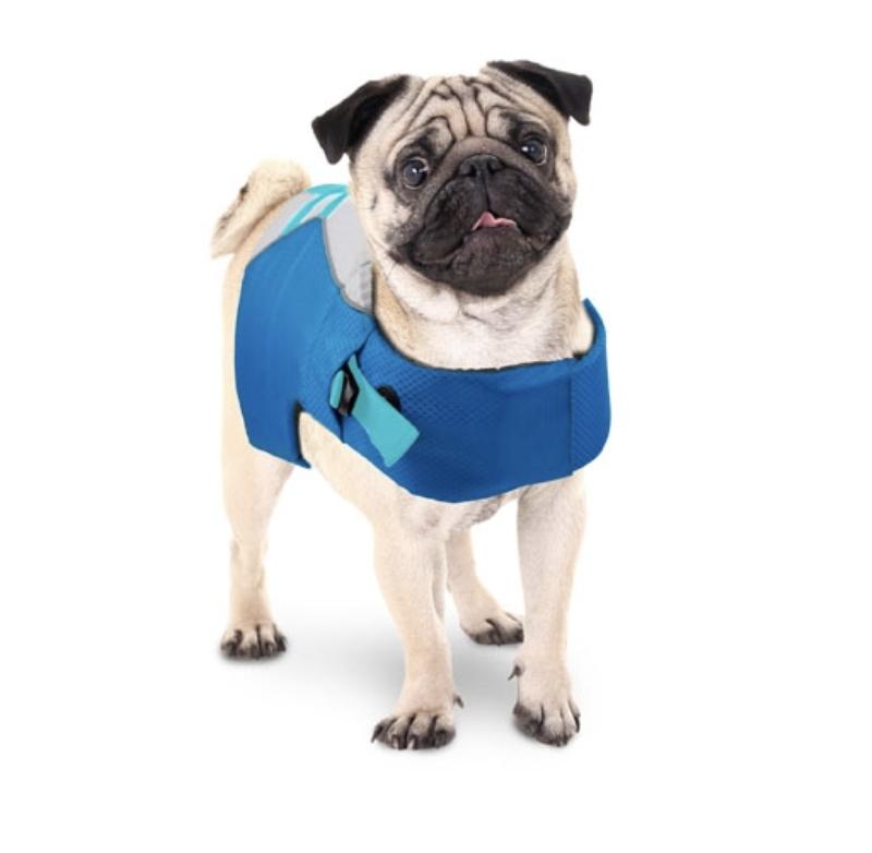 Dog LifeJacket - S size
